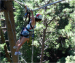 About to bungee jump 150' out of a redwood