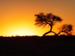 View near Andreisvale,  Kalahari Desert.